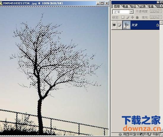 操作,本教程为大家介绍四种方法使用photoshop抠树枝